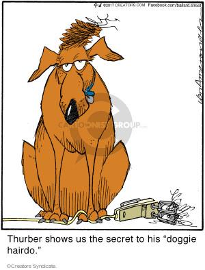 Comic Strip Jerry Van Amerongen  Ballard Street 2017-04-06 dog hair