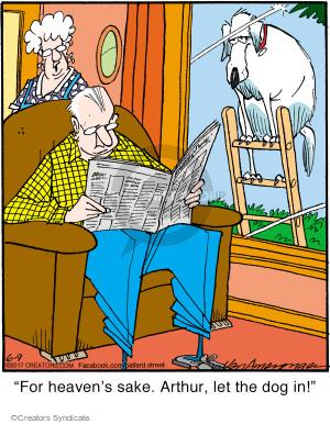 For heavens sake. Arthur, let the dog in!