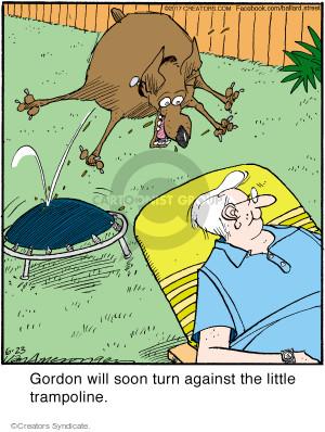 Cartoonist Jerry Van Amerongen  Ballard Street 2017-06-23 trampoline