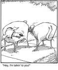 Cartoonist Jerry Van Amerongen  Ballard Street 2010-06-04 hey