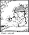 Cartoonist Jerry Van Amerongen  Ballard Street 2010-08-05 gardening