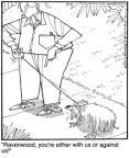 Cartoonist Jerry Van Amerongen  Ballard Street 2010-08-11 pet behavior