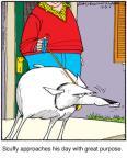 Cartoonist Jerry Van Amerongen  Ballard Street 2010-12-31 pet