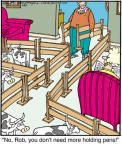 Cartoonist Jerry Van Amerongen  Ballard Street 2012-01-20 fence