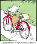 Cartoonist Jerry Van Amerongen  Ballard Street 2012-05-21 bicycle