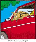 Cartoonist Jerry Van Amerongen  Ballard Street 2012-08-16 window