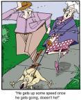 Cartoonist Jerry Van Amerongen  Ballard Street 2013-01-26 speed