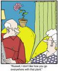 Cartoonist Jerry Van Amerongen  Ballard Street 2013-11-15 companion