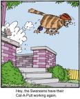 Cartoonist Jerry Van Amerongen  Ballard Street 2013-11-20 cat