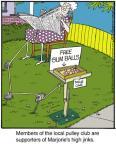Cartoonist Jerry Van Amerongen  Ballard Street 2013-12-25 trick