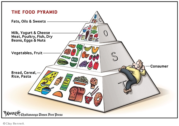 The food pyramid. Fats, oils & sweets. Milk, yogurt & cheese. Meat, Poultry, Fish, Dry Beans, Eggs & Nuts. Bread, Cereal, Rice, Pasta. Consumer. Cost.