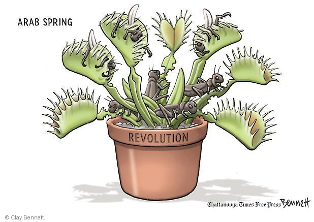 Cartoonist Clay Bennett  Clay Bennett's Editorial Cartoons 2011-05-17 plant