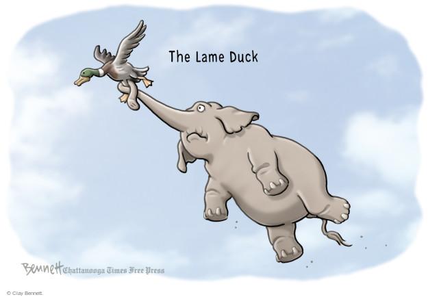 Cartoonist Clay Bennett  Clay Bennett's Editorial Cartoons 2014-12-22 procedure