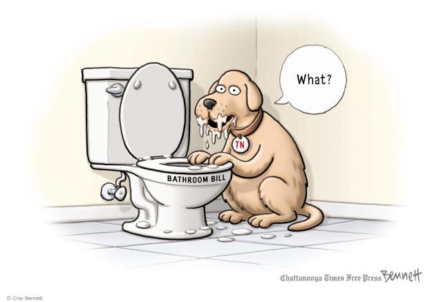 Cartoonist Clay Bennett  Clay Bennett's Editorial Cartoons 2016-04-20 Bill of Rights