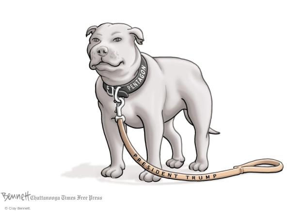 Clay Bennett  Clay Bennett's Editorial Cartoons 2017-04-14 Donald