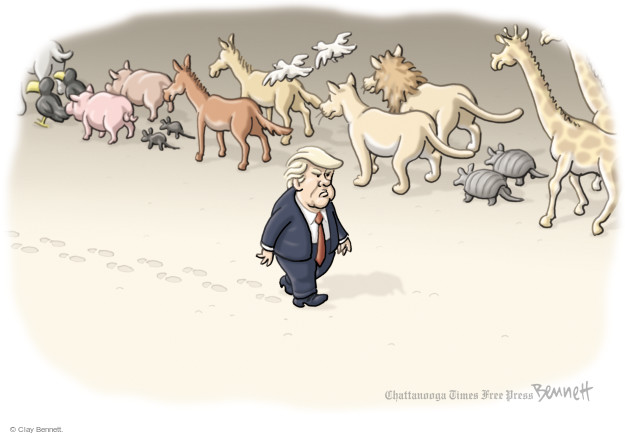No caption (President Donald Trump goes in the opposite direction of a line of animals walking in mated pairs).