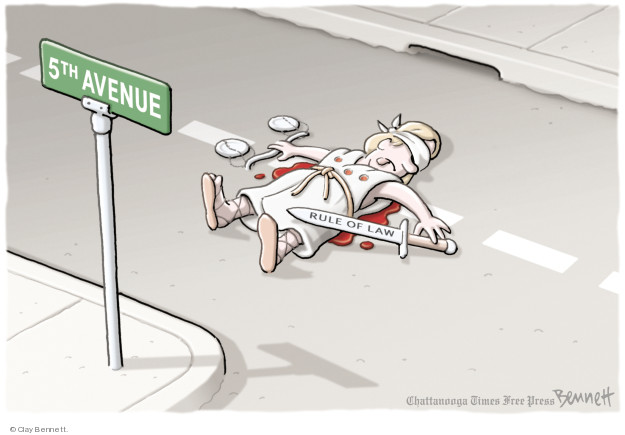 Clay Bennett  Clay Bennett's Editorial Cartoons 2018-01-29 presidential election
