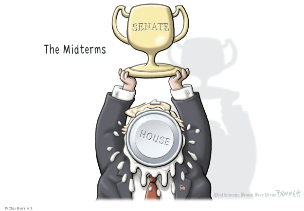 Cartoonist Clay Bennett  Clay Bennett's Editorial Cartoons 2018-11-11 vote