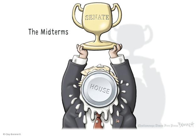 The Midterms. Senate. House.