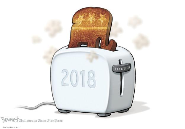 Clay Bennett  Clay Bennett's Editorial Cartoons 2018-11-16 2018 election