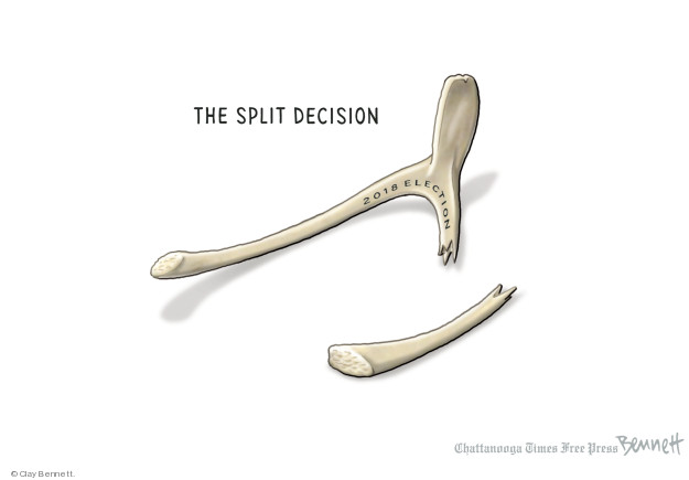 Cartoonist Clay Bennett  Clay Bennett's Editorial Cartoons 2018-11-26 vote