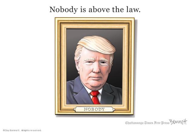 Cartoonist Clay Bennett  Clay Bennett's Editorial Cartoons 2019-07-28 law