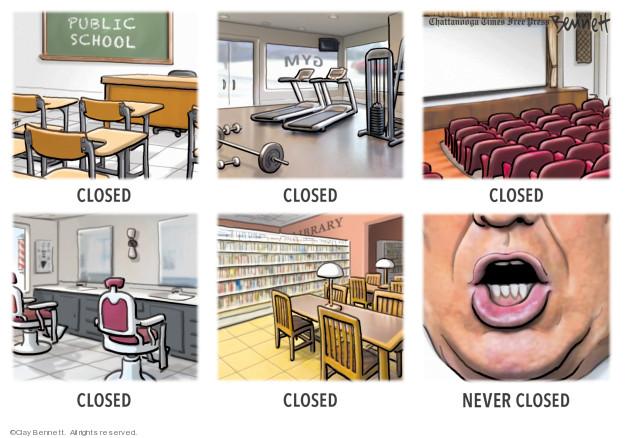 Clay Bennett  Clay Bennett's Editorial Cartoons 2020-03-29 Donald