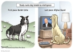Cartoonist Clay Bennett  Clay Bennett's Editorial Cartoons 2009-02-24 Bill O'Reilly