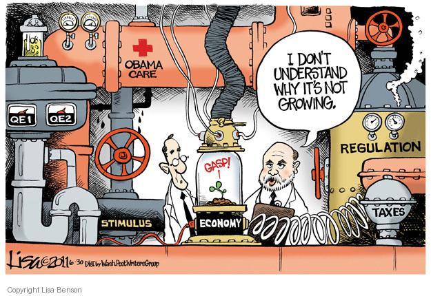 Lisa Benson  Lisa Benson's Editorial Cartoons 2011-06-30 federal