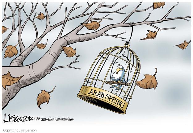 Lisa Benson  Lisa Benson's Editorial Cartoons 2012-11-28 Arab revolt