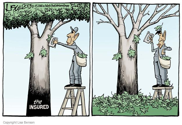 Lisa Benson  Lisa Benson's Editorial Cartoons 2013-11-15 Obamacare