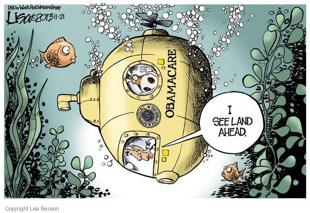 Cartoonist Lisa Benson  Lisa Benson's Editorial Cartoons 2013-11-21 bottom