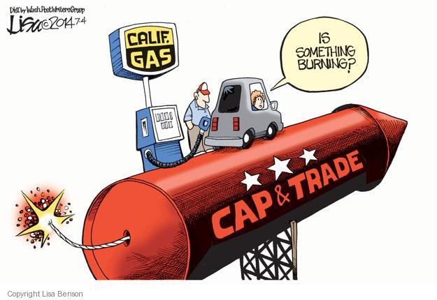 Cartoonist Lisa Benson  Lisa Benson's Editorial Cartoons 2014-07-04 environmental