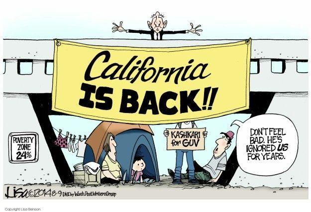 Cartoonist Lisa Benson  Lisa Benson's Editorial Cartoons 2014-08-09 gubernatorial