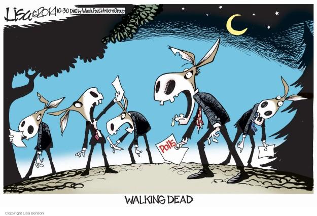 Cartoonist Lisa Benson  Lisa Benson's Editorial Cartoons 2014-10-30 election