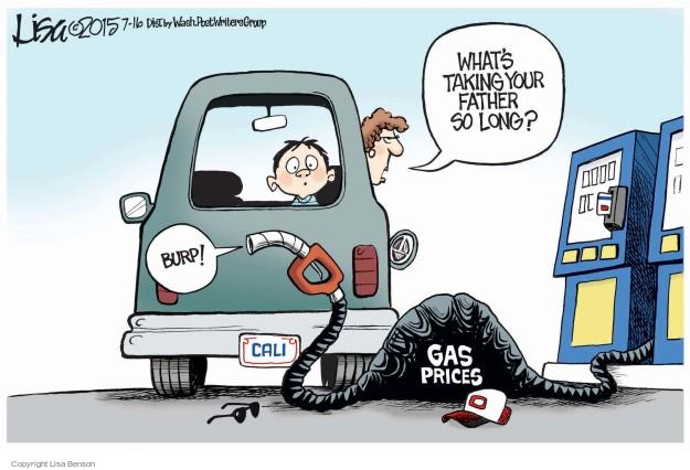 Lisa Benson  Lisa Benson's Editorial Cartoons 2015-07-16 price
