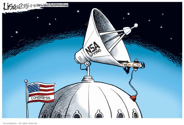 Cartoonist Lisa Benson  Lisa Benson's Editorial Cartoons 2015-12-31 national security