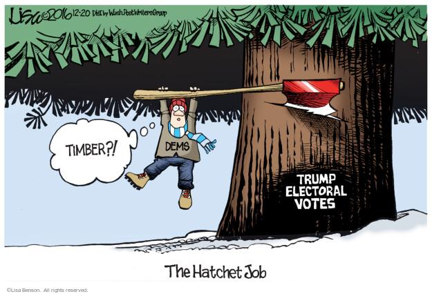 Lisa Benson  Lisa Benson's Editorial Cartoons 2016-12-20 election result