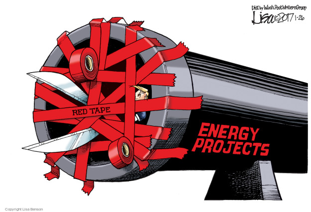 Cartoonist Lisa Benson  Lisa Benson's Editorial Cartoons 2017-01-26 business