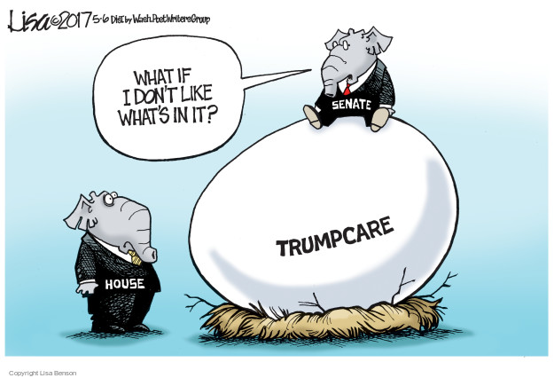 Lisa Benson  Lisa Benson's Editorial Cartoons 2017-05-06 affordable care act