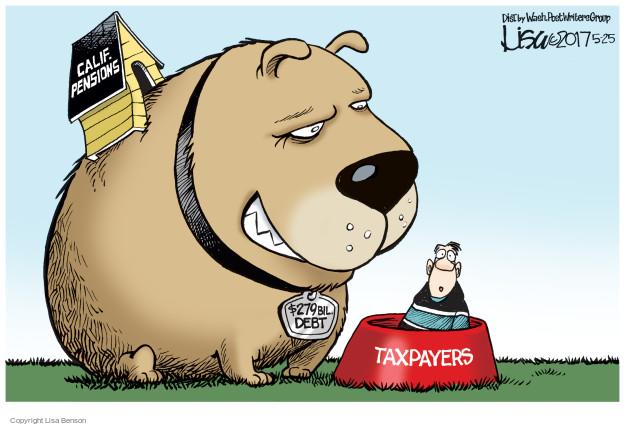 Lisa Benson  Lisa Benson's Editorial Cartoons 2017-05-25 state legislation