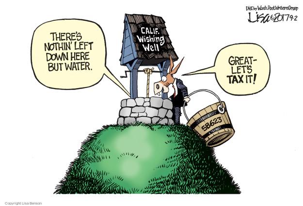 Lisa Benson  Lisa Benson's Editorial Cartoons 2017-09-02 state legislation