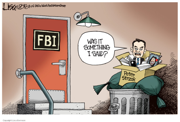 FBI. Was it something I said? Peter Strzok.