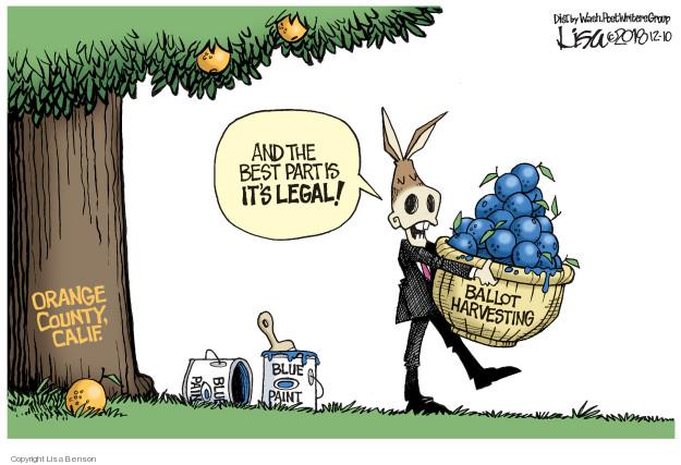 Cartoonist Lisa Benson  Lisa Benson's Editorial Cartoons 2018-12-10 2018 election