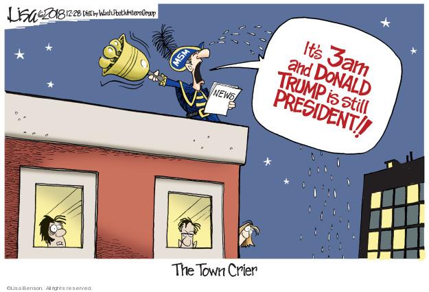 Cartoonist Lisa Benson  Lisa Benson's Editorial Cartoons 2018-12-28 Donald Trump media