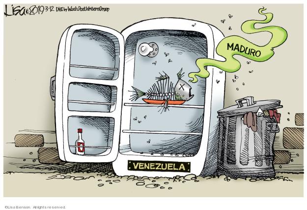 Cartoonist Lisa Benson  Lisa Benson's Editorial Cartoons 2019-03-12 crisis