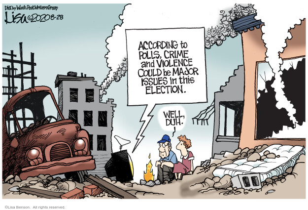 Lisa Benson  Lisa Benson's Editorial Cartoons 2020-08-28 2020 election