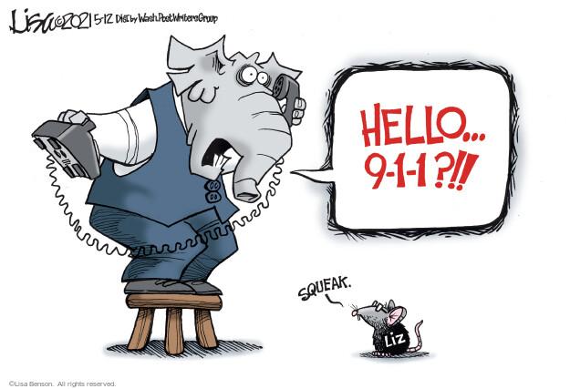 Lisa Benson  Lisa Benson's Editorial Cartoons 2021-05-12 2020 election Donald Trump