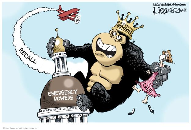 Lisa Benson  Lisa Benson's Editorial Cartoons 2021-06-10 state election