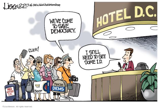 Lisa Benson  Lisa Benson's Editorial Cartoons 2021-07-14 state election